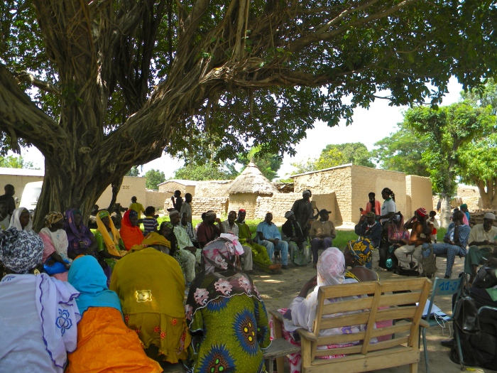 Mali village meeting tree