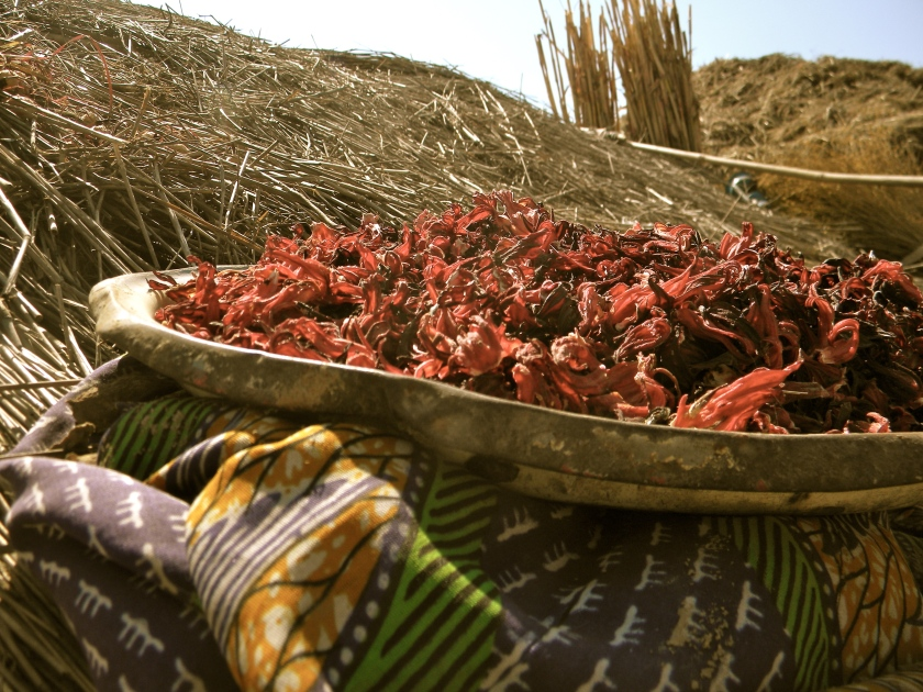 Mali rural village drink traditional hibiscus bissap dableni flower infusion juice