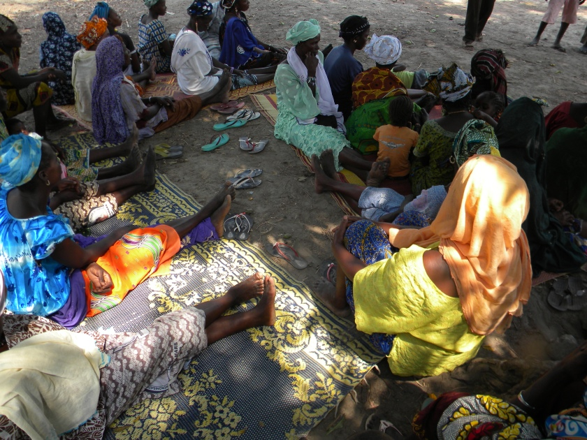 Mali rural village traditional women farmer agriculture meeting