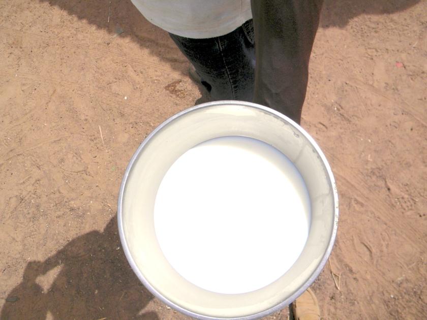 Mali village rural fresh milk gift