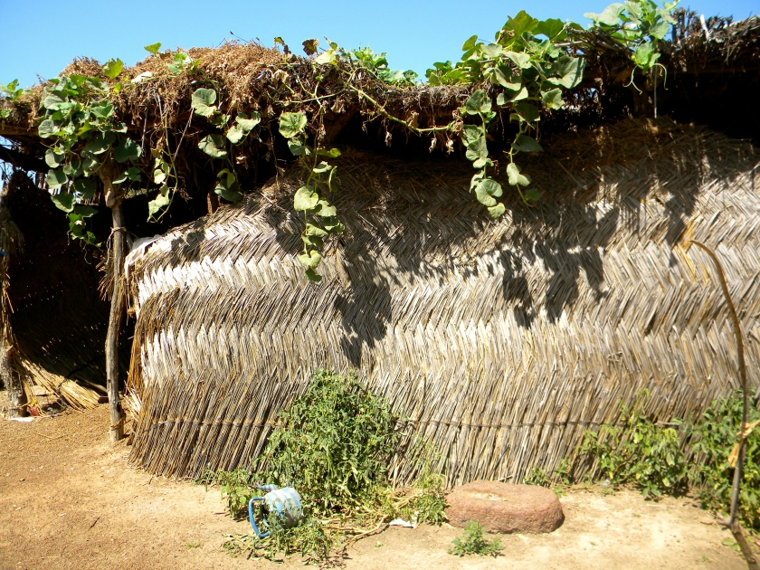 Mali rural village shelter home weave traditional hut
