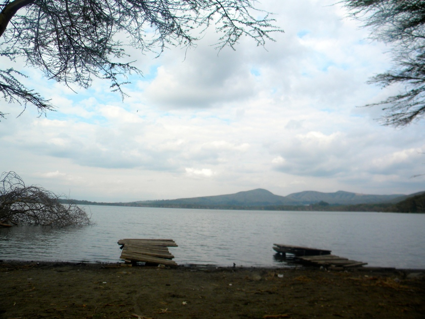 Kenya Rift Valley lake Nakuru soda dock