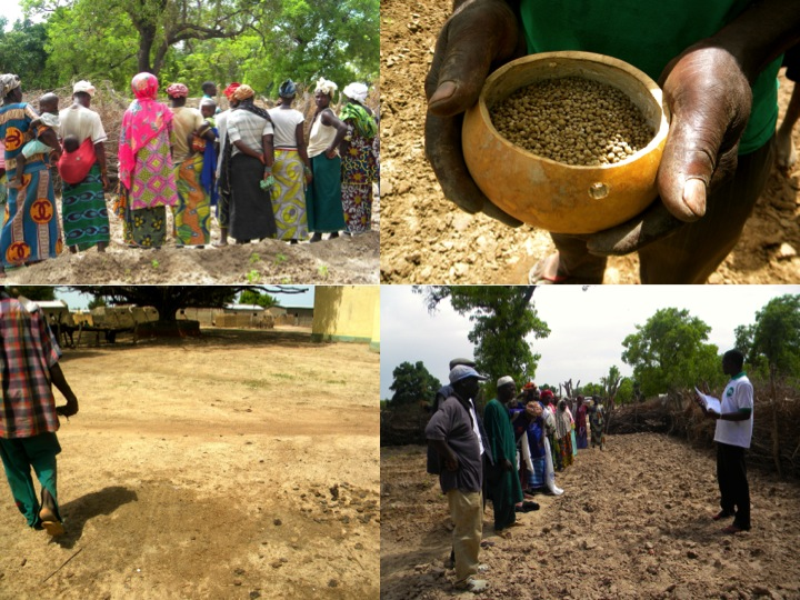 agriculture Mali rural farmers training