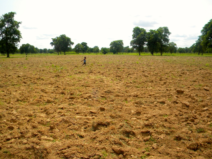 Mali agriculture village field boy horizon