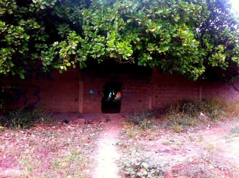 Mali Bamako hedge home garden urban city