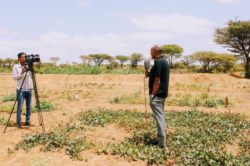 Somaliland Africa Somali news reporting agriculture field interview